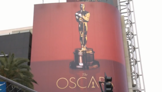 The 89th Academy Awards rolled out the red carpet