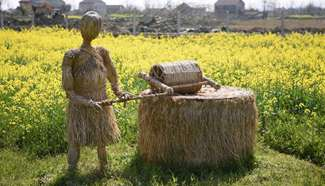 Straw art works in cole flower fields attract visitors in C China