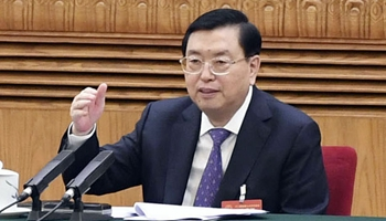 Chinese leaders review gov't work report with lawmakers