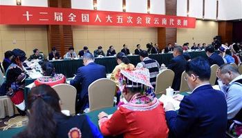 Plenary meeting of 12th NPC deputies from Yunnan opens to media