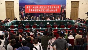Plenary meeting of 12th NPC deputies from Hong Kong opens to media