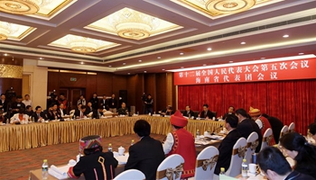 Plenary meeting of 12th NPC deputies from Hainan opens to media