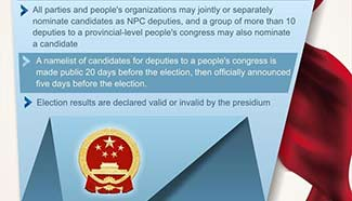 Graphics: How deputies of China's NPC are elected