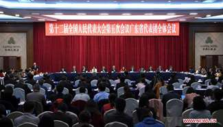 Plenary meeting of 12th NPC deputies from Guangdong opens to media