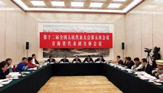Plenary meeting of 12th NPC deputies from Qinghai opens to media