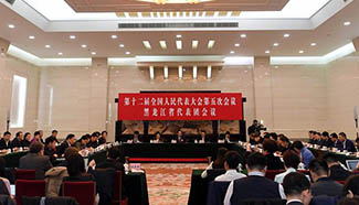 Plenary meeting of 12th NPC deputies from Heilongjiang opens to media