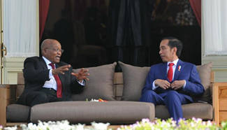 Indonesian president meets with South Africa's president in Jakarta