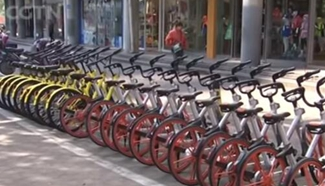 NPC deputy continues to look for better bike-sharing regulations