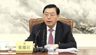 Zhang Dejiang chairs 2nd meeting of executive chairpersons of presidium