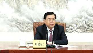 Zhang Dejiang chairs 3rd meeting of executive chairpersons of presidium