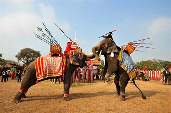 National Elephant Day marked in Ayutthaya, Thailand