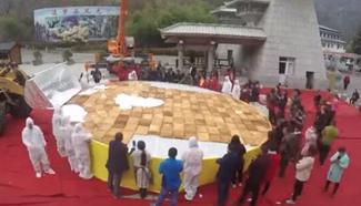 Bulldozers, cranes make 5-tonne mega cake