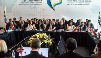 Representatives attend meeting on Asia-Pacific economic integration in Chile