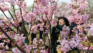 In pics: Spring scenery across China