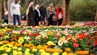 Egyptian people visit Spring Flower Exhibition in Giza
