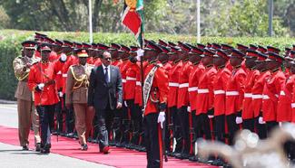 Somali president starts visit to Kenya