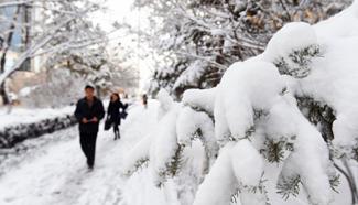 Hohhot greets a snowfall