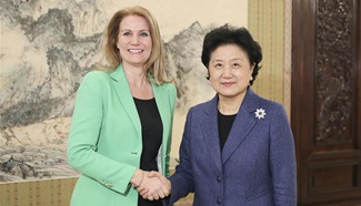Liu Yandong meets chief executive of Save the Children International