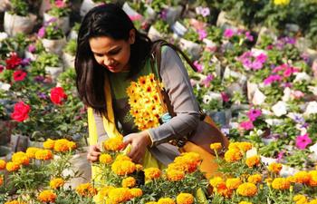 In pics: Bangladesh Flower Fest 2017