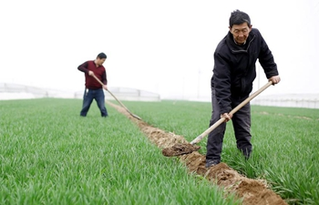"Farmers busy with farm work after ""Qingming"" around China"