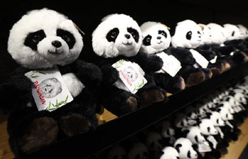 "In pics: ""Pandasia"" at Ouwehands Zoo in Rhenen, Netherlands"