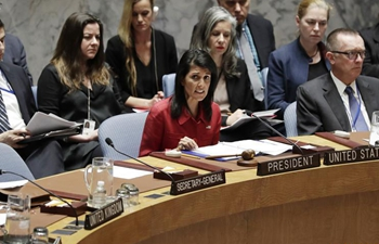 Spotlight: UN Security Council divided over U.S. attack on Syria base