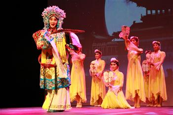 Chinese performance arts group performs in Namibia