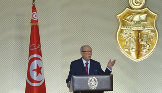 Army to protect Tunisia's national wealth from protests: president