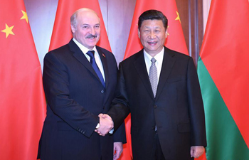Belarus an important partner in Belt and Road: Xi