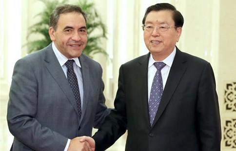 China's top legislator meets president of Chilean Chamber of Deputies