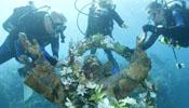 World's 1st underwater preserve celebrates 50th birthday