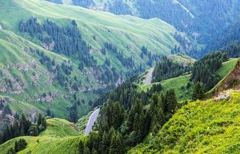 In pics: Xinjiang's most beautiful highway
