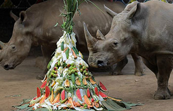 World Rhino Day commemorated in Malang, Indonesia
