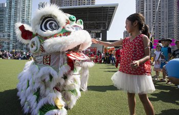 2017 Dragon Lion Dance Festival held in Canada