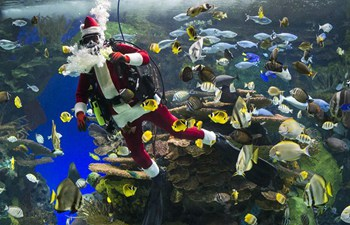 Diver dressed as Santa Claus performs in Toronto's holiday show
