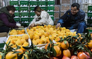 E-commerce firms help increase navel orange sales in central China