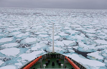 China's icebreaker Xuelong continues Antarctic expedition