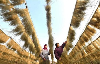 Handmade vermicelli enters selling season as New Year drawing near