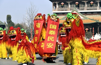 Lion dance performed in E China to greet new year