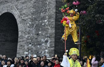 Folk performance held in Shandong to greet new year