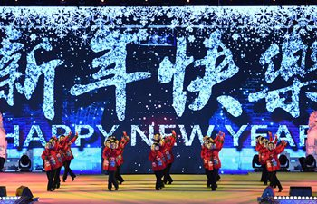 Various activities held around world to greet year 2018