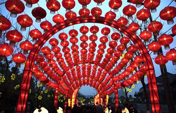People enjoy festive lanterns in Wuhan, C China's Hubei