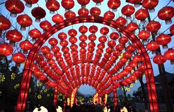 People enjoy festive lanterns in Wuhan, C China's Hubei
