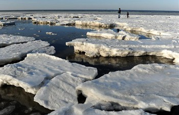 Sea ice formed in NE China due to continuous low temperature