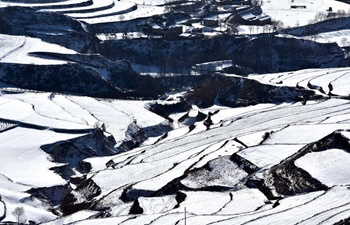 Scenery of terraced fields covered by snow in NW China's Gansu