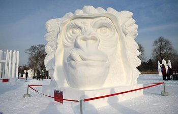 Harbin Int'l Snow Sculpture Competition concludes