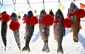 Winter fishing activity takes place in Inner Mongolia