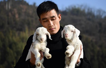 Pic story: Migrant worker Zhao Lei and his breeding business