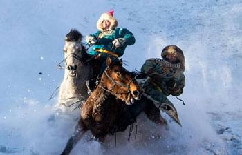 Horse taming attracts tourists in China's Inner Mongolia