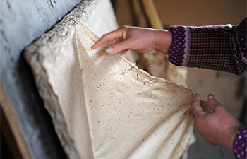 Villagers in Xi'an innovate method of traditional Chinese papermaking
